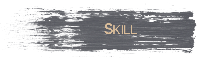 Skill 3D Visualisation