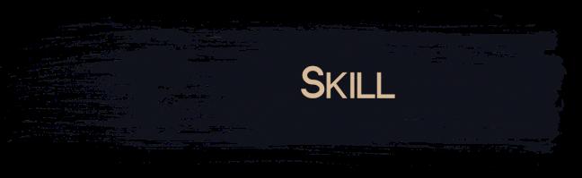Skill 3D Visualisation